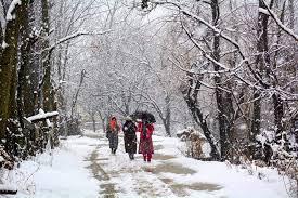 देवभूमि में मौसम ने ली करवट बदरीनाथ, हेमकुंड, फूलों की घाटी में बर्फबारी